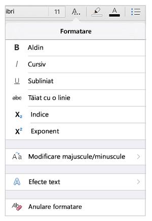Opțiuni pentru formatarea textului