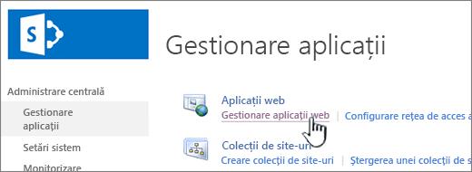 Deschideți setări de aplicație web