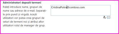 Captură de ecran a casetei text Administratori depozit termeni din Centrul de administrare SharePoint. În această casetă, puteți să tastați numele persoanei pe care doriți să o adăugați ca administrator.
