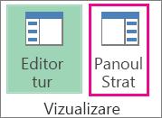 Butonul Panou de activități de pe fila Pornire