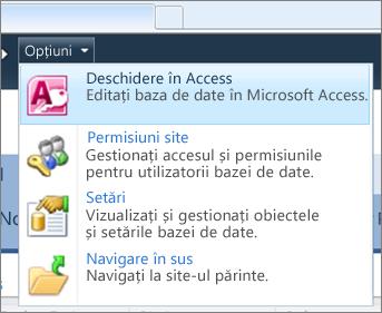 Meniul Opțiuni al unui site de bază de date web din SharePoint