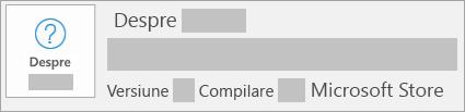 Captură de ecran afișând versiunea și compilarea Microsoft Store