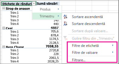 Opțiuni de filtrare pentru date PivotTable