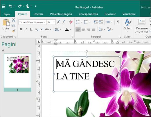 Captură de ecran a unei casete text pe o pagină a unui fișier Publisher.