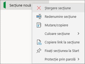 Captură de ecran a meniului contextual pentru ștergerea unei file de secțiune în OneNote pentru Windows 10.