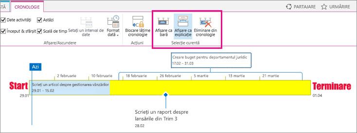 Cronologie activitate vizualizarea secțiunea curentă din fila cronologie