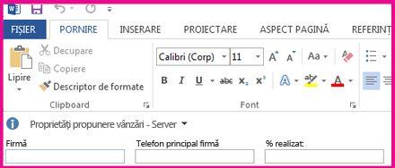 Panoul informații document afișează casete text într-un formular pentru a colecta metadate de la utilizatori.