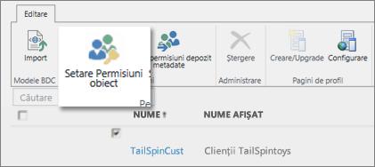 Captură de ecran a Centrului de administrare SharePoint Online sub BCS. Afișează butonul Setare Permisiuni obiect în panglică.