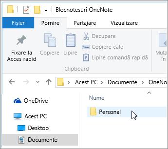 Captură de ecran a folderului Documente Windows cu folderul Blocnotes OneNote vizibil.