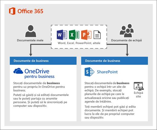 O diagramă a modului în care puteți utiliza două tipuri de stocare: OneDrive sau Site-uri de echipă