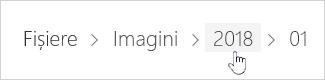 Selectarea unui folder OneDrive