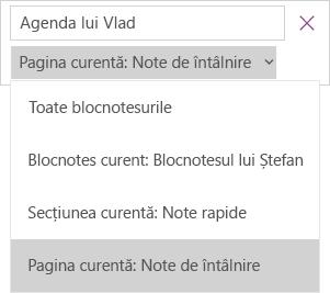 Afișează lista verticală de căutare cu opțiuni pentru domeniu, pagina curentă este activă.