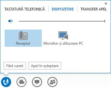 Captură de ecran cu opțiunile audio