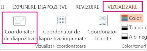 Pe fila Vizualizare, faceți clic pe Coordonator de diapozitive.