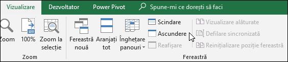 Ascunderea sau afișarea unui registru de lucru din vizualizarea > Windows > ascunde/reafișa