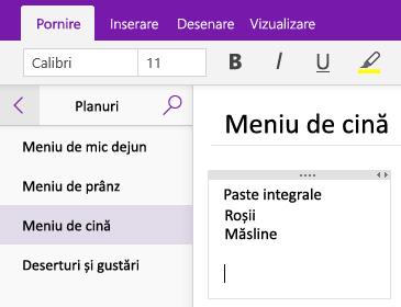 Captură de ecran cu un container de note pe o pagină din OneNote