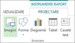 Fila Instrumente proiectare raport