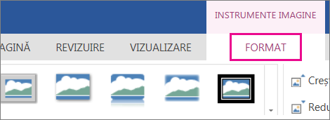 Imagine cu opțiunile de formatare din panglica Instrumente imagine