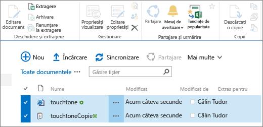 Editarea parte din panglică cu două elemente selectate în listă