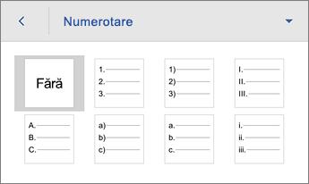 Comanda Numerotare, afișând opțiunile de formatare