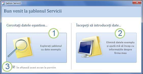 Formularul de pornire al șablonului pentru baze de date web Servicii