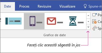 Fila Date, butonul Galerie de grafice de date