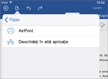 Caseta de dialog Imprimare în Word pentru iOS vă permite să imprimați documentul sau deschideți-l în altă aplicație.
