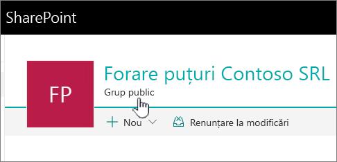 Antet pentru site-uri conectate de grup