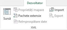 Comenzile XML din fila Dezvoltator