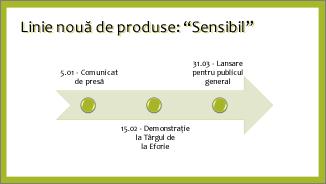Exemplu de Cronologie de bază