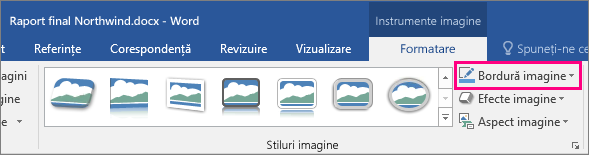 Opțiunea Bordură imagine este evidențiată pe fila Format - Instrumente imagine.