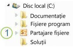 Pictograma Folder partajat din Windows Explorer