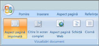 Captură de ecran afișează grupul Vizualizări Document având selectată opțiunea de aspect pagină imprimată. Alte opțiuni disponibile sunt citire ecran complet, aspect pagină Web, schiță, și schiță.
