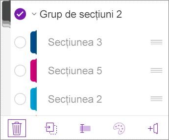 Ștergerea grupurilor de secțiuni în OneNote pentru iOS