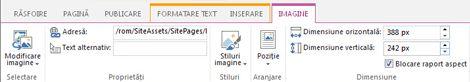 Opțiuni editare imagine