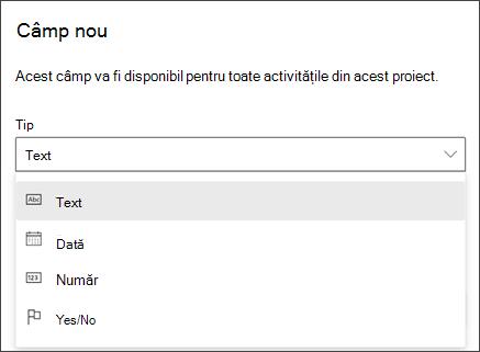 Captură de ecran din caseta de dialog Project of New Field afișând tipuri de text, dată, număr, da/nu
