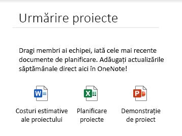 Fișierele încorporate pe o pagină din OneNote pentru Windows 10