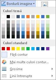 Opțiuni bordură imagine