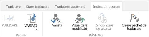 Captură de ecran a filei variații din site-ul țintă. Fila conține două grupuri, variație și traducere