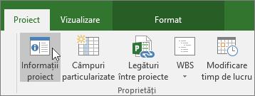 Informațiile de proiect