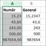 exemplu pentru modul în care apar numerele cu formate diferite, cum sunt Număr și General.