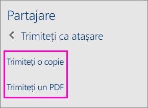 Imagine cu cele două opțiuni din panoul Partajare pentru trimiterea prin e-mail a unui document ca PDF sau copie