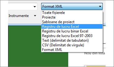 Selectați ce registru de lucru Excel deschideți pentru date