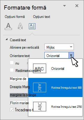 Panoul efecte text cu orientare text selectată