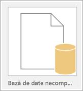 Pictograma unei baze de date necompletate