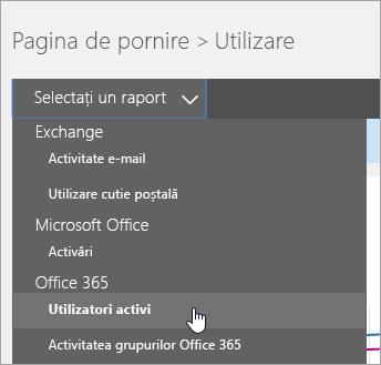 """În lista verticală """"Selectați un raport"""", faceți clic pe """"Utilizatori activi"""""""