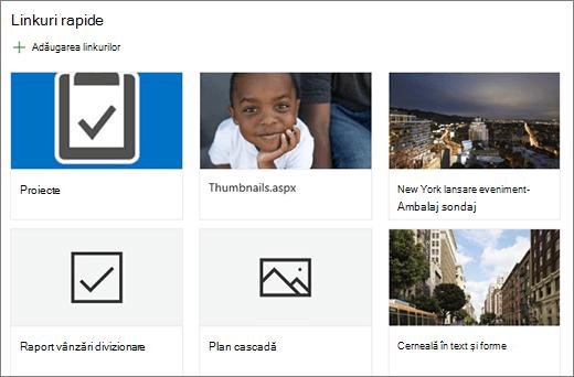 Vizualizarea Linkuri rapide din grila de aspect