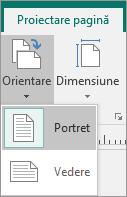 Fila Proiectare pagină cu Orientare selectat și opțiuni de tip Portret sau Vedere.