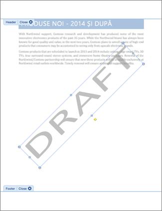 Imagine de document cu inscripționarea Ciornă.