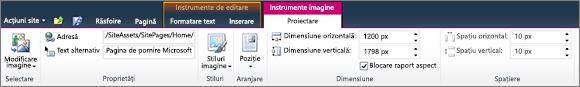 Instrumente imagine fila permite să vă setați dimensiunea, a stilului, poziției și text alternativ pe imagini.